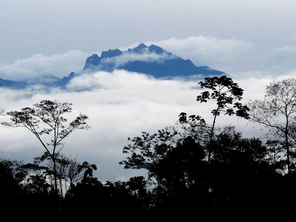Manu Biosphere Reserve Peru