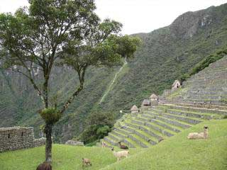Hiking the Inca Trail / 5 Days