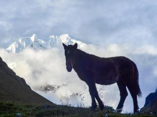Salkantay Trek to Machu Picchu 5 Days | Salkantay Trail Peru