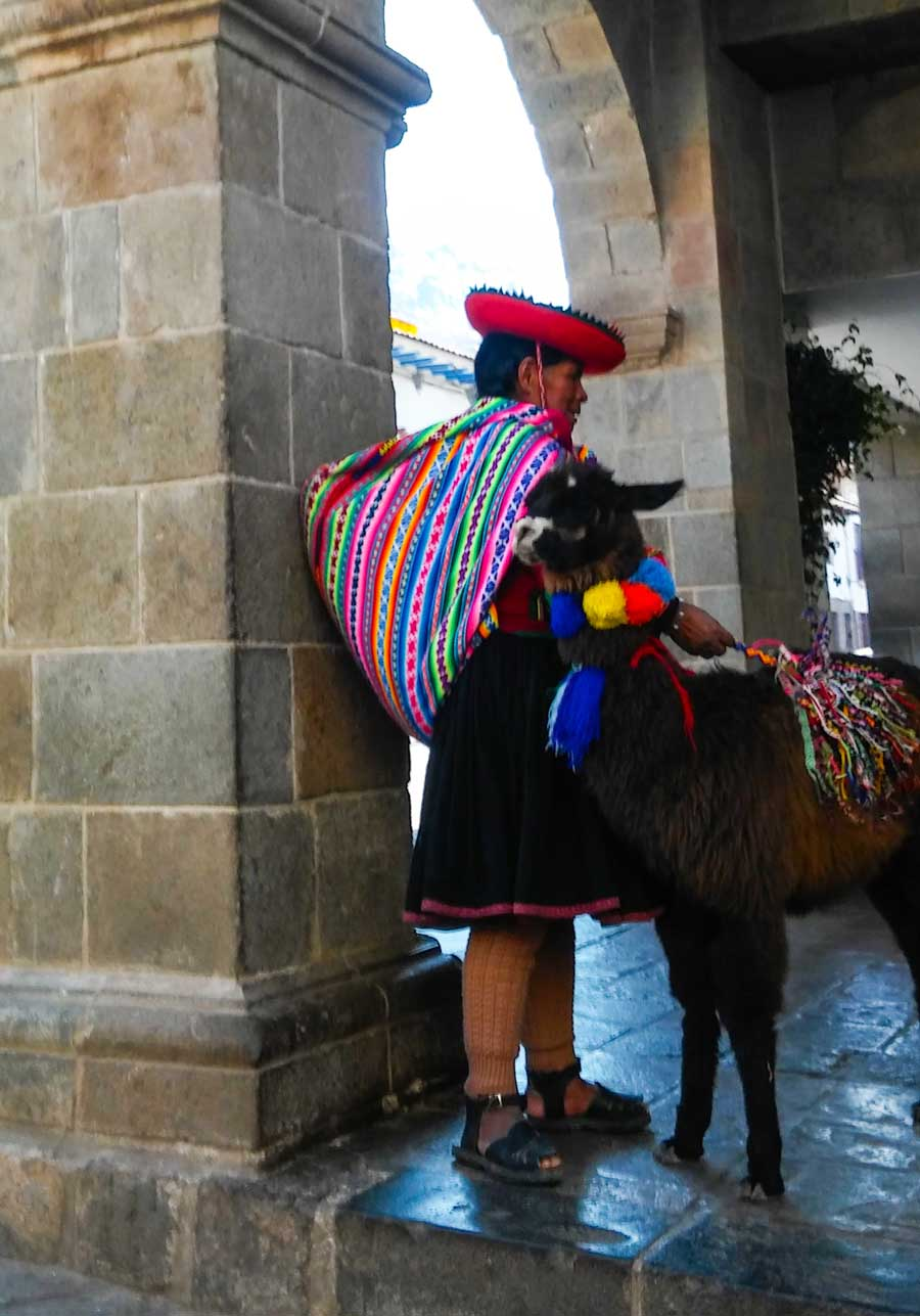 why are llamas important in peru
